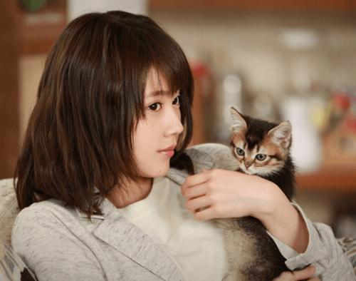 子猫を抱く有村架純